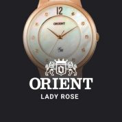 Orient Lady Rose